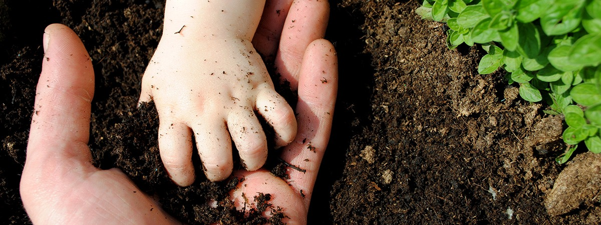 Soil - Father & Son Hands